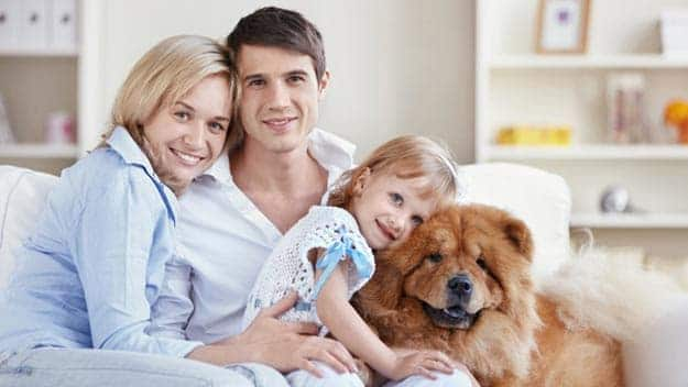 Wills & Trusts dog-young-family Direct Wills Leicestershire